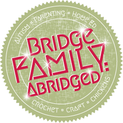 Bridge Family Abridged Home Education and Life Blog